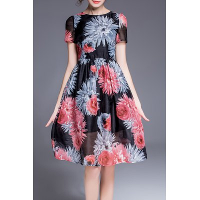 Floral Printed Defined Dress