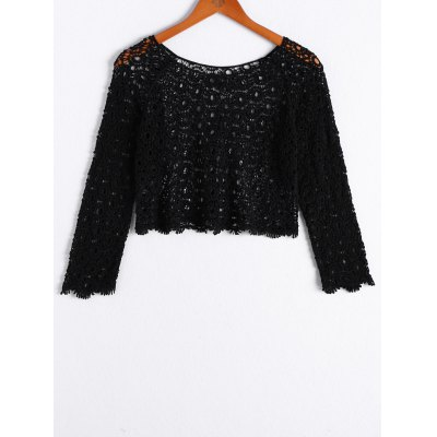 Neck Openwork Long Sleeves Crop Top For Women