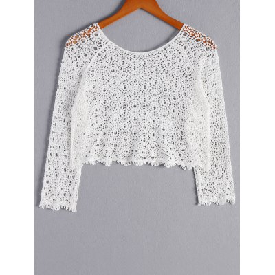 Stylish ScoopNeckLong Sleeves Openwork Crop Top For WomenCrop Tops<br>Stylish ScoopNeckLong Sleeves Openwork Crop Top For Women<br><br>Material: Spandex<br>Clothing Length: Short<br>Pattern Type: Others<br>Style: Fashion<br>Weight: 0.370kg<br>Package Contents: 1 x Crop Top