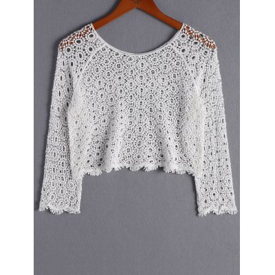 Stylish Scoop Neck Long Sleeves Openwork Crop Top For Women