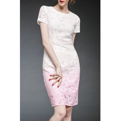 Ombre Lace Fitted Dress