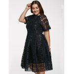 Chic Round Neck Plus Size See-Through Dress deal