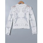 cheap Lace Splicing See-Through Embroidery Coat