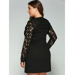 Plus Size Lace Pockets Long Sleeve Dress for sale