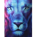 3D Starry Sky and Lion Print Hooded Long Sleeve Hoodie deal