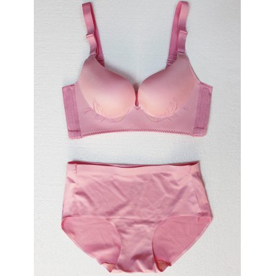 Seamless Embroidered Wire Free Bra Set
