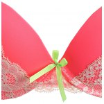 Lace Spliced Gathered Embroidered Bra Set deal