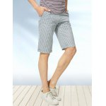Zipper Fly Vertical Stripe Print Straight Leg Shorts deal
