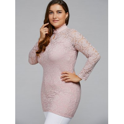 Ruffled High Collar Plus Size Lace Dress