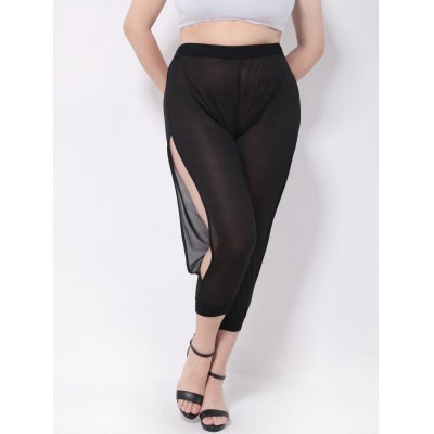 Mesh Split Harem Pants