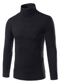 Slim Fit Roll Neck Pullover Sweater