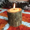 best Creative Original Ecology Woody Candle Holder ( Without Candle )
