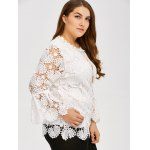 Plus Size Openwork Sheer Lace Blouse deal