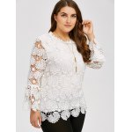 cheap Plus Size Openwork Sheer Lace Blouse