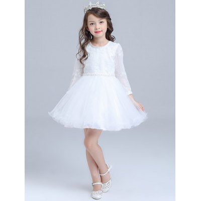 Long Sleeve Lace Tulle Dress