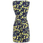 cheap Lemon Print Fit and Flare Dress