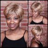 Short Double Color Fluffy Neat Bang Straight Synthetic Wig