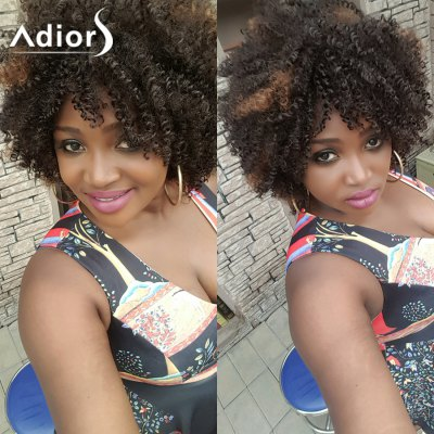 Short Afro Curly Side Bang Synthetic Wig