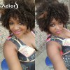 Buy Adiors Hair Short Mixed Color Afro Curly Side Bang Synthetic Wig COLORMIX