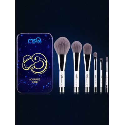 6 Pcs Aquarius Magnetic Makeup Brushes Set with Iron Box