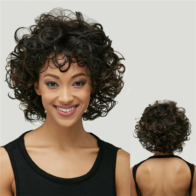 Short Synthetic Shaggy Curly Black Brown Mixed Wig