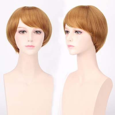 Short Oblique Bang Straight Cosplay Wig