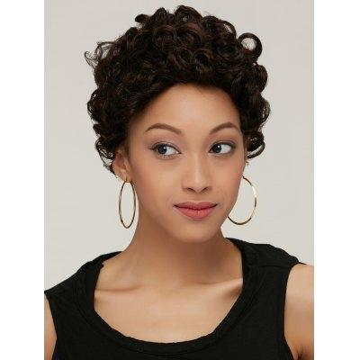 Short Black Brown Fluffy Curly Synthetic Wig