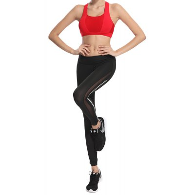 Mesh Panel See Thru Gym Running Leggings