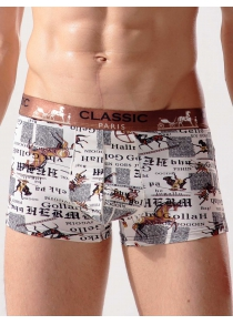 Animal Print Stretch Breathable Swimming Trunks