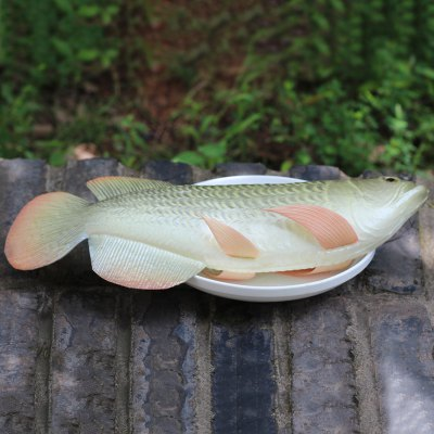 PU Simulation Arowana Fish Model Squishy ToySquishy toys<br>PU Simulation Arowana Fish Model Squishy Toy<br><br>Features: Creative Toy, Soft<br>Materials: PU<br>Package Contents: 1 x Simulation Fish<br>Products Type: Squishy Toy<br>Shape/Pattern: Animal<br>Size(CM): 37*9cm<br>Weight: 0.5920kg