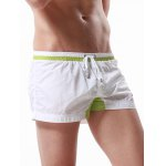 Buy Drawstring Graphic Embroidered Panel Sport Shorts L WHITE