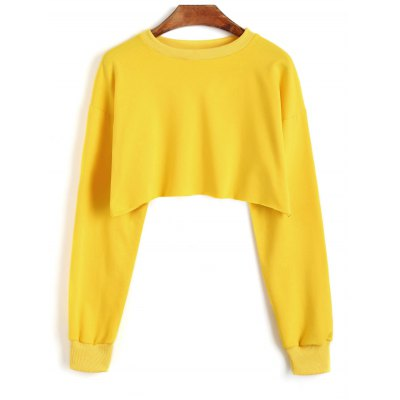 Pullover Sporty Cropped Sweatshirt