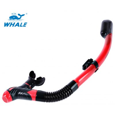 WHALE Snorkeling Scuba Diving Swimming Dry Snorkel