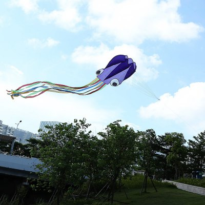 4M Frameless Octopus Style Kite with 30m Line