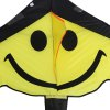 1.6m Carbon Steel Small Smile Style Flying Kite deal