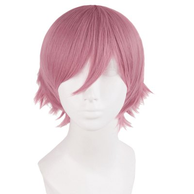 Short Straight Mixed Color Toupee Wigs Cosplay Party for Men