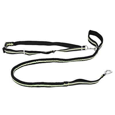 Reflective Bungee Dog Leash