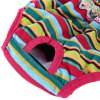 Rainbow Strip Female Pet Puppy Dog Physiological Pant photo