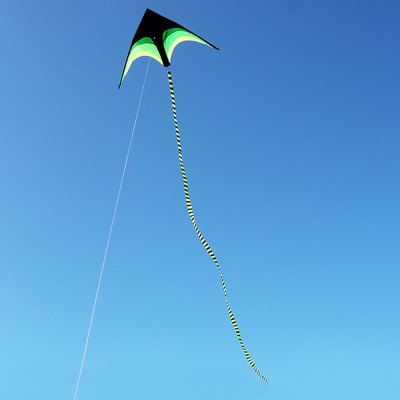 2m Carbon Steel Grassland Flying Kite with Tail
