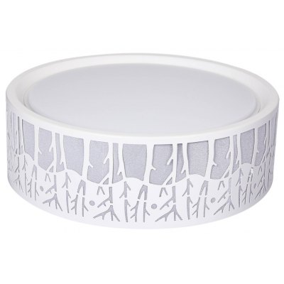 36W LED Dimmable Ceiling Light