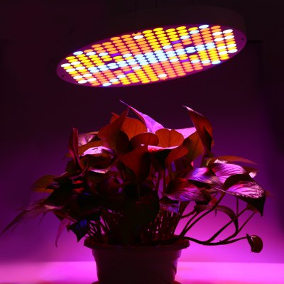 50W LED Grow Light