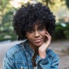 cheap AISIHAIR Short Fluffy Black Afro Curly Synthetic Wigs