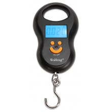 WeiHeng WH-A03L 50kg / 10g Portable Mini Electronic Scale