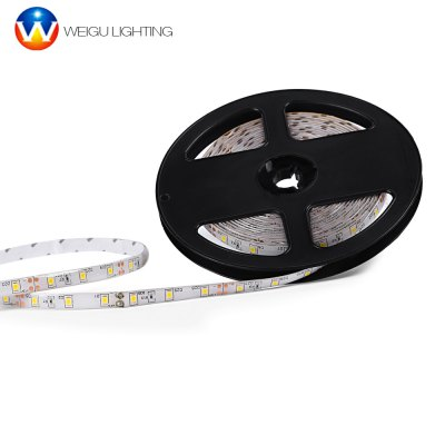 WEIGU LIGHTING 12V LED Strip