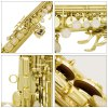 LADE WSS - 750 Soprano Saxophone for sale