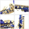 Practical LADE Alto Eb Saxophone High Quality Instrument Gift for Sax Lover photo