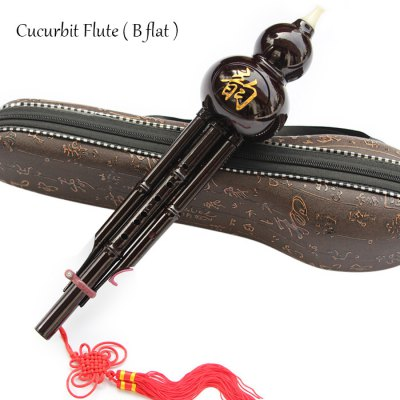 Traditional B flat Hulusi Gourd Cucurbit Flute with Case Chinese Musical Instrument Study