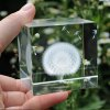 Crystal Cube Dandelion Decoration for sale
