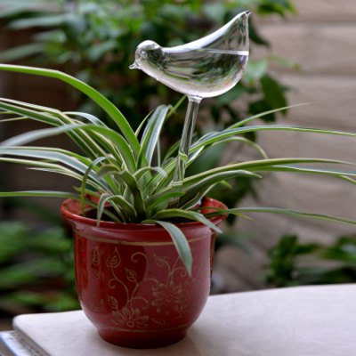 Glass Bird Style Automatic Drip Watering Controller