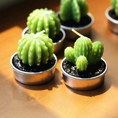 6pcs-simulation-succulent-plants-shape-candles